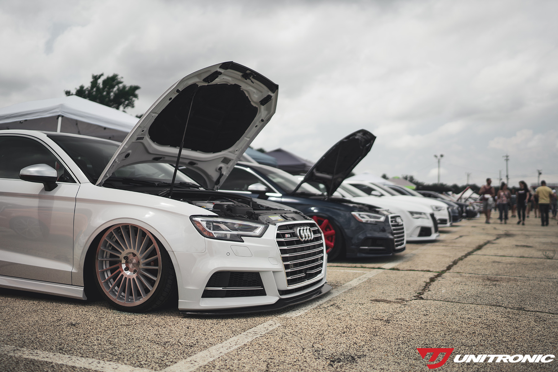 Audi Lineup at Waterfest 24